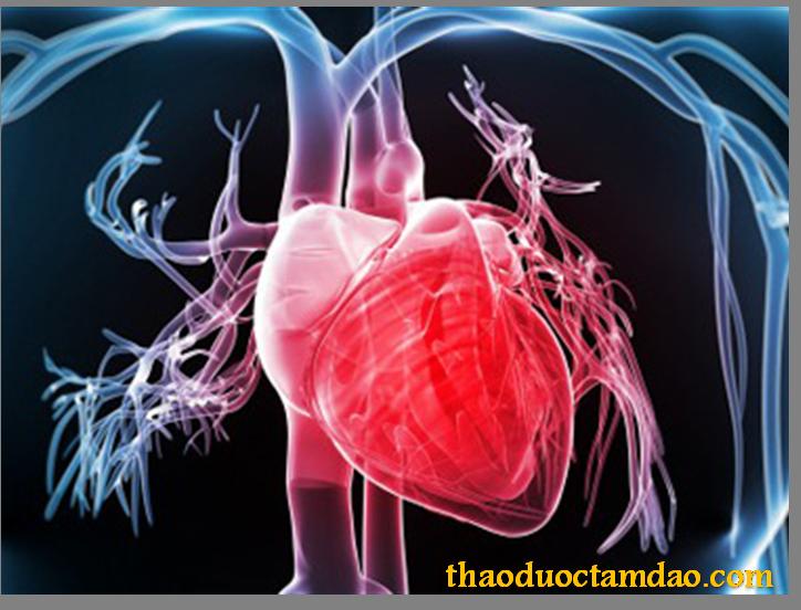ĐTHT tăng cường chức năng tim